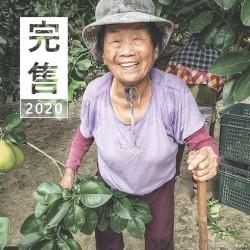 完售 40年麻豆老欉文旦禮盒 10斤