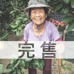 【完售】麻豆李阿嬤 20年老欉文旦禮盒 10斤