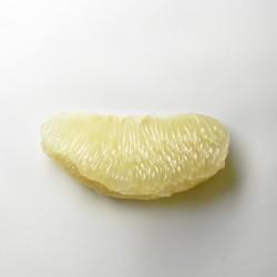 麻豆老欉文旦 一元試吃活動 已截止